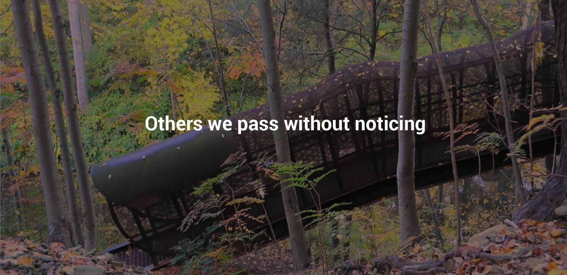 Others we pass without noticing